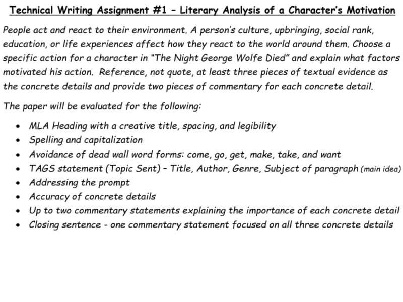 TWA #1 (Technical Writing Assignment
