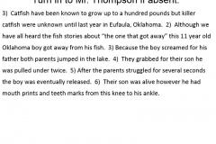 Run-on Practice #3 - Paragraph #3